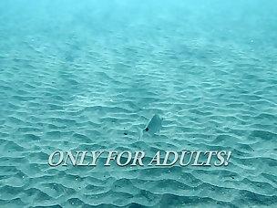 Underwater Porn Videos